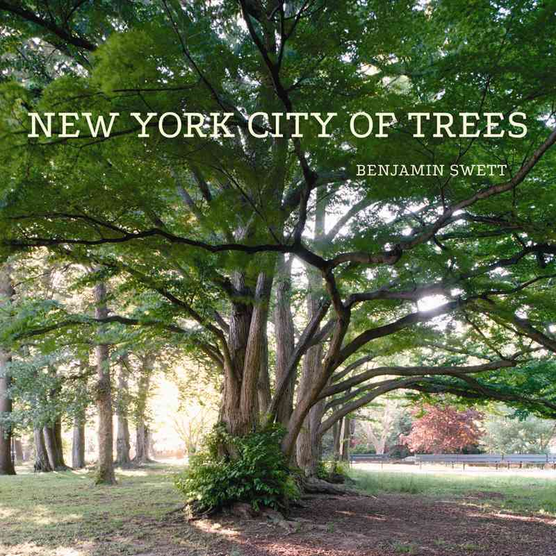New York City of Trees By Swett, Benjamin